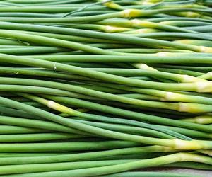 Garlic moss
